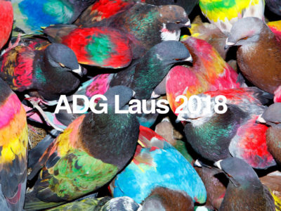 <h2>Paco Adín: judge for the Laus Awards</h2>